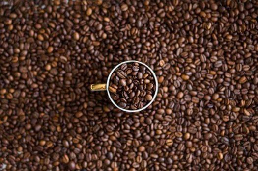 Робуста или арабика — какому кофе отдать предпочтение